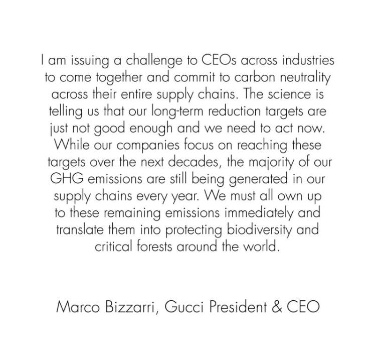 Gucci Social nota de prensa
